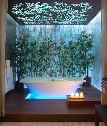 Exotic Bathtub