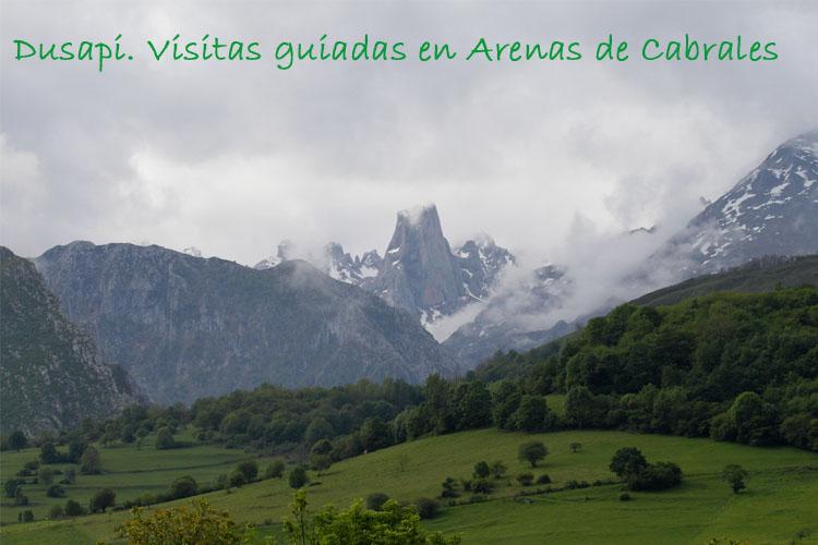Dusapi. Visitas guiadas en Arenas de Cabrales