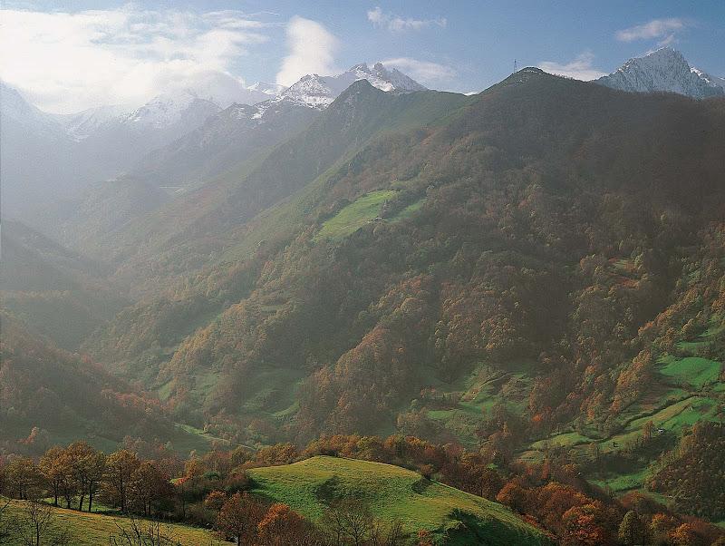 4lena Bosque De R Valgrande