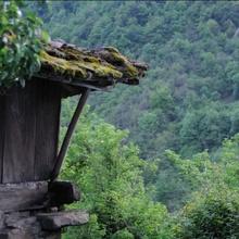 Activiades  rurales en Asturias