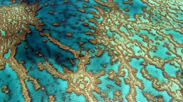 Yann Arthus Bertrand Earth From Above 52