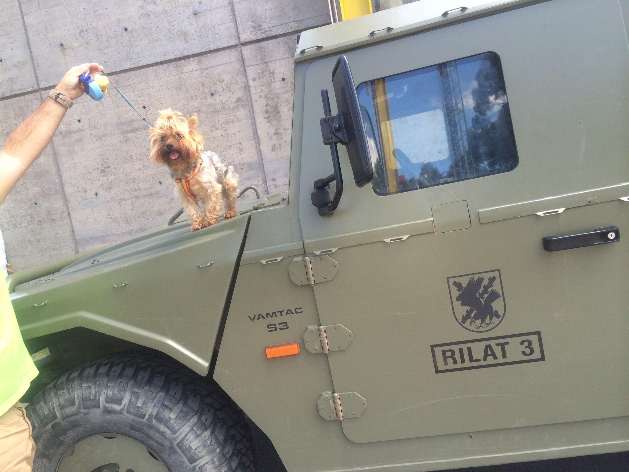Aquí Mateo subido en un vehículo militar VAMTAC de @laBRILAT
