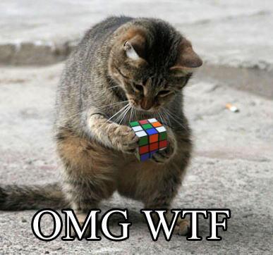 Funny Lol Cat Wtf