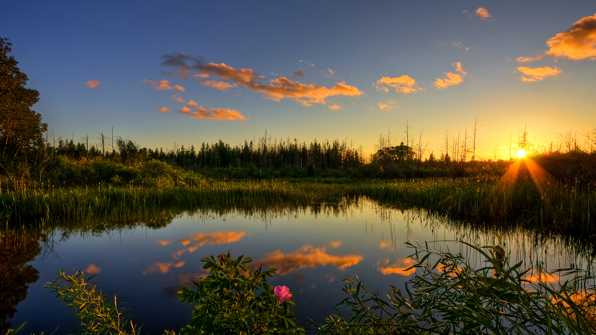 Nature Hd Background 22