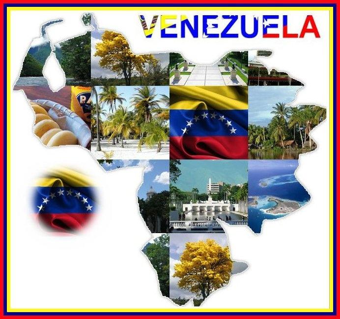 Image result for venezuela collage