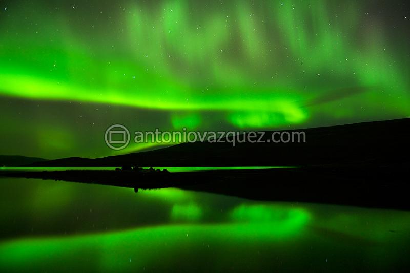 Aurora boreal en el Fiordo de Patreksfjördur