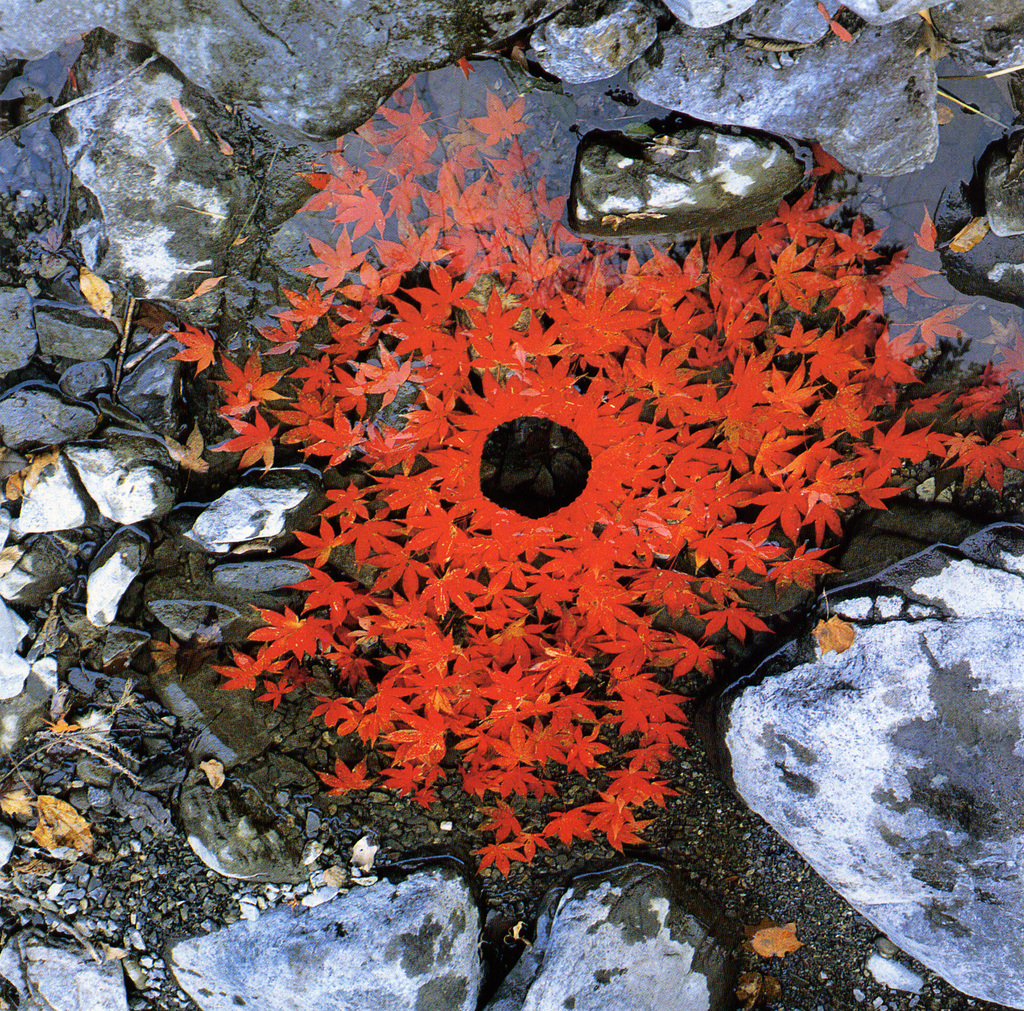 Land Art Andy Goldsworthy 03