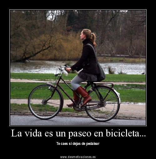 Bici Cl Copia