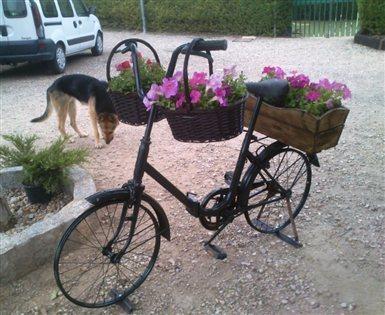 Bicis Y Mas Foto Principal 385x315