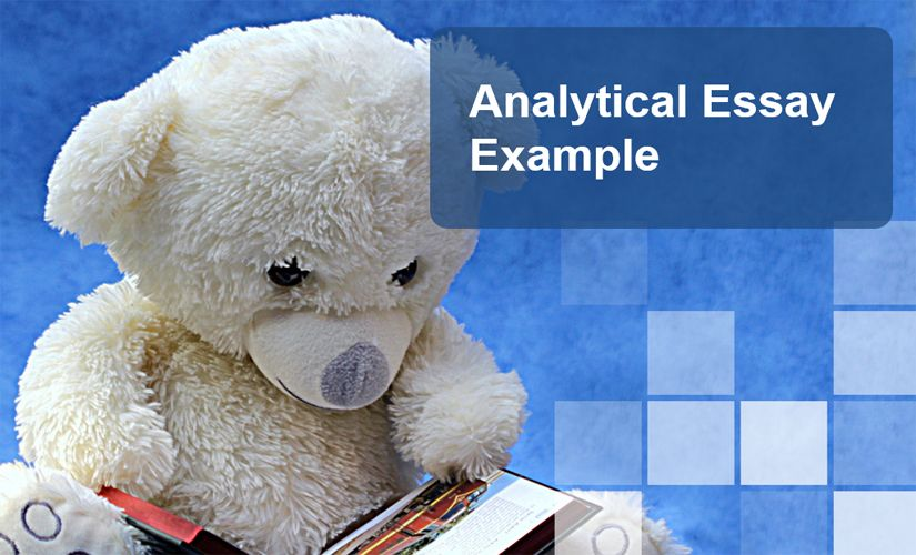 Analytical Essay Example
