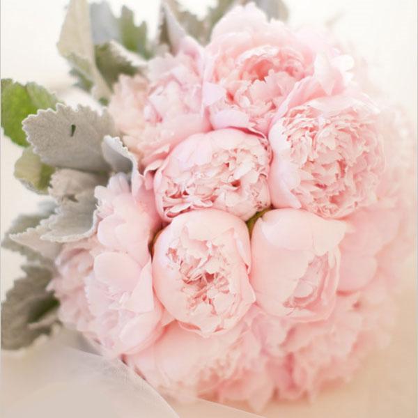 Photos De Bouquets De Pivoines Roses