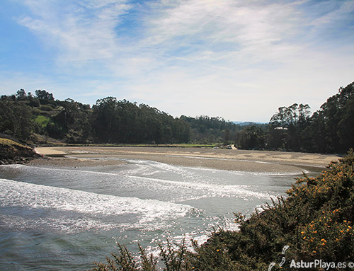 Where The River Porcia Flows Into The Sea