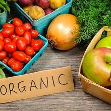 10 verduras para plantar en casa