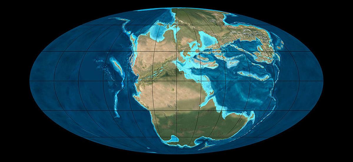 Pangea6