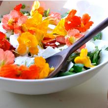 Des fleurs au menu
