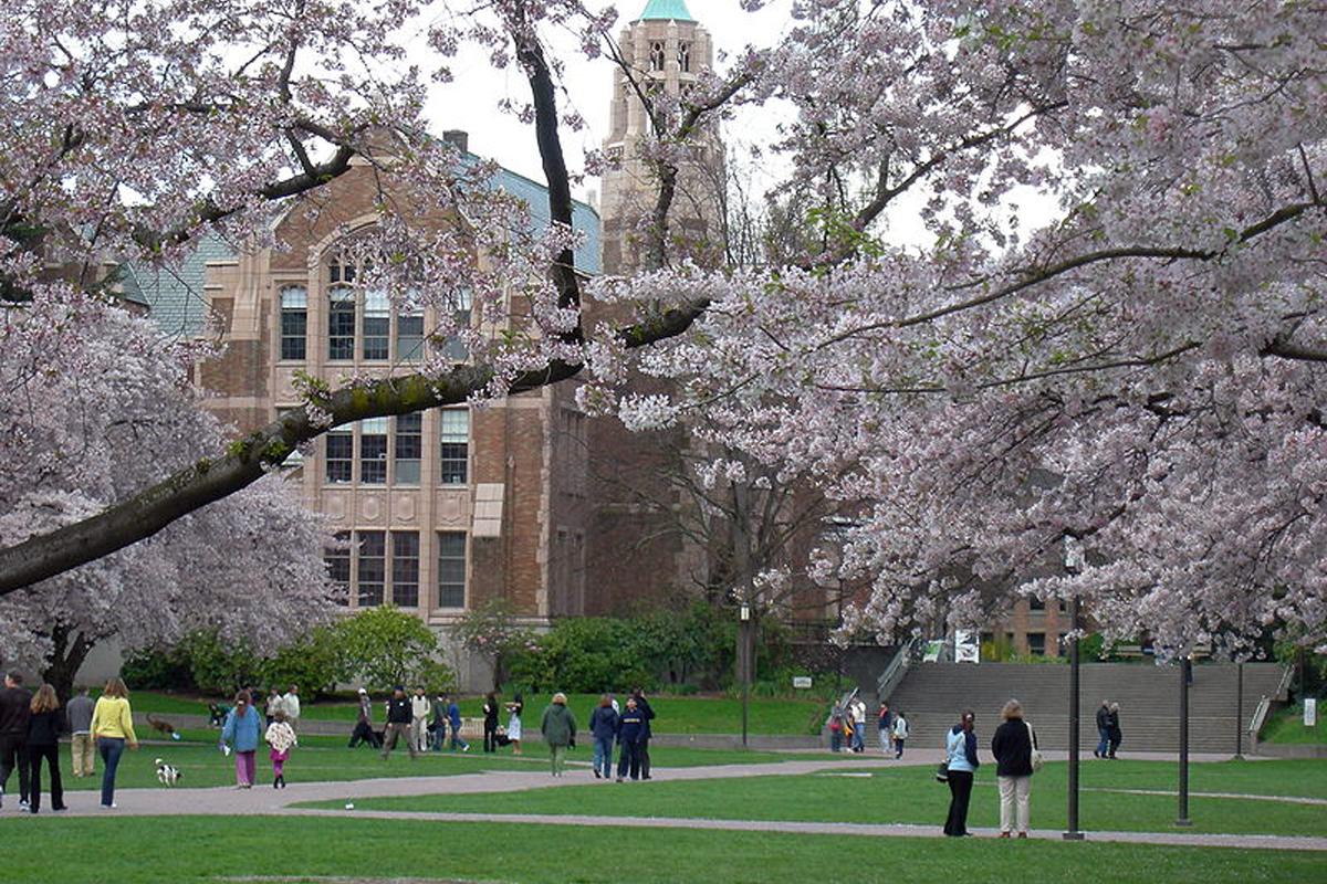 15. Universidad de Washinton