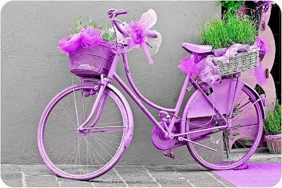 Decoracion Con Bicicleta Plantas