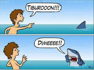 Tiburon Dimeee