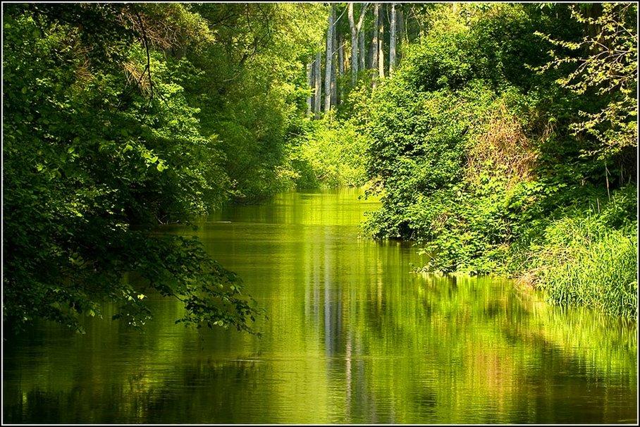 342461 Green Lake P