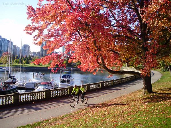 Parque Bici En Pareja