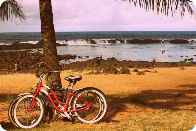 Us Hi Playa Bicicleta