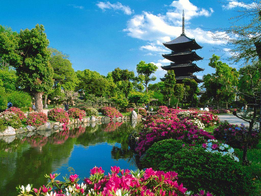 Japon Con La Mente Abierta 5 154