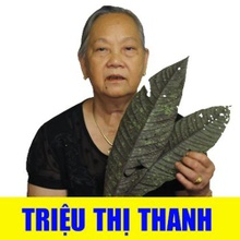 trieuthithanh